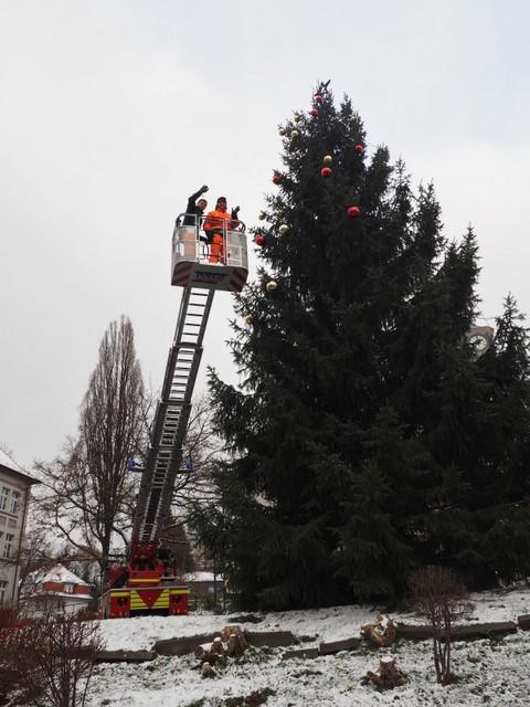 Aus Der Rotfichte Ist Ein Weihnachtsbaum Geworden Www